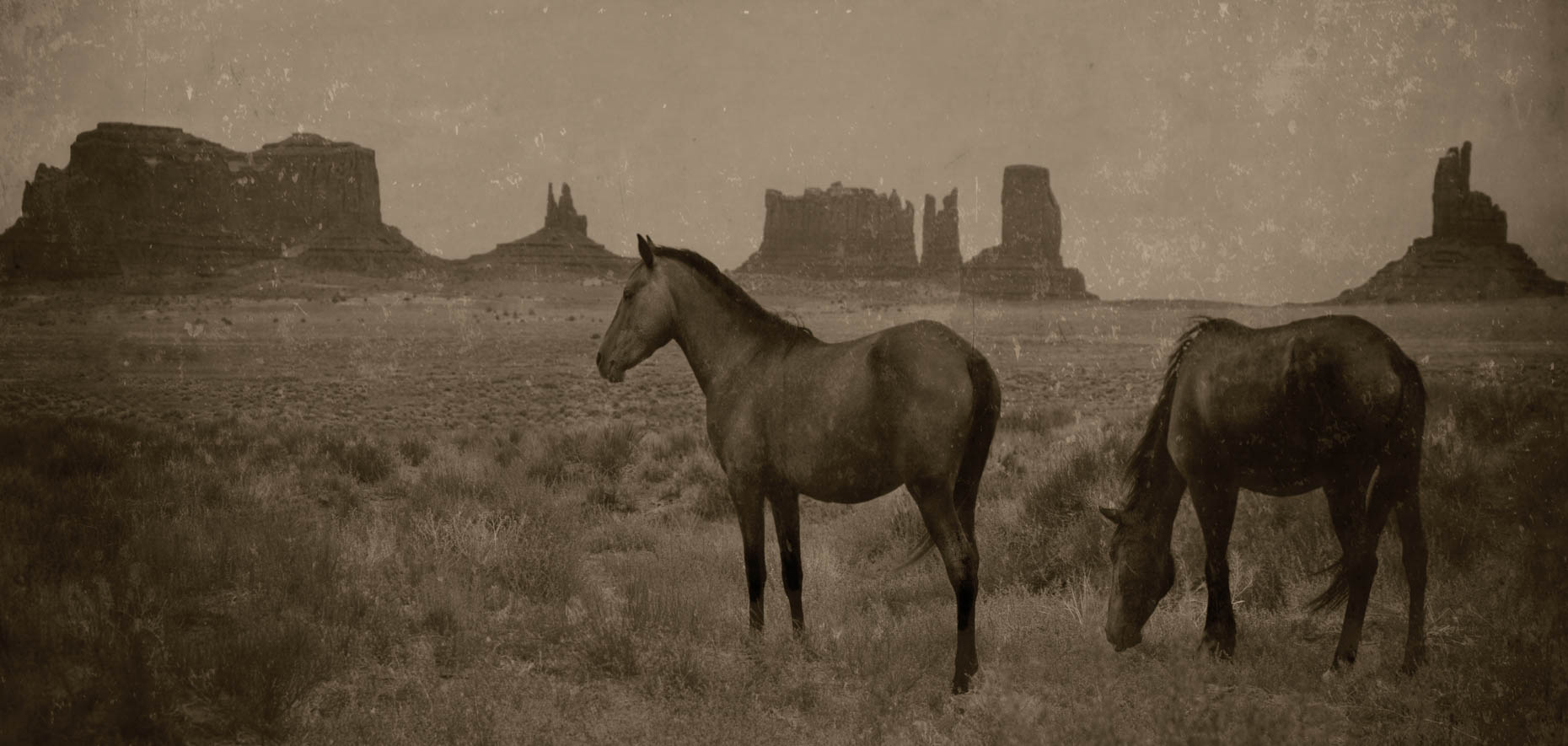 """Two Mustangs"", Monument Valley, Utah"