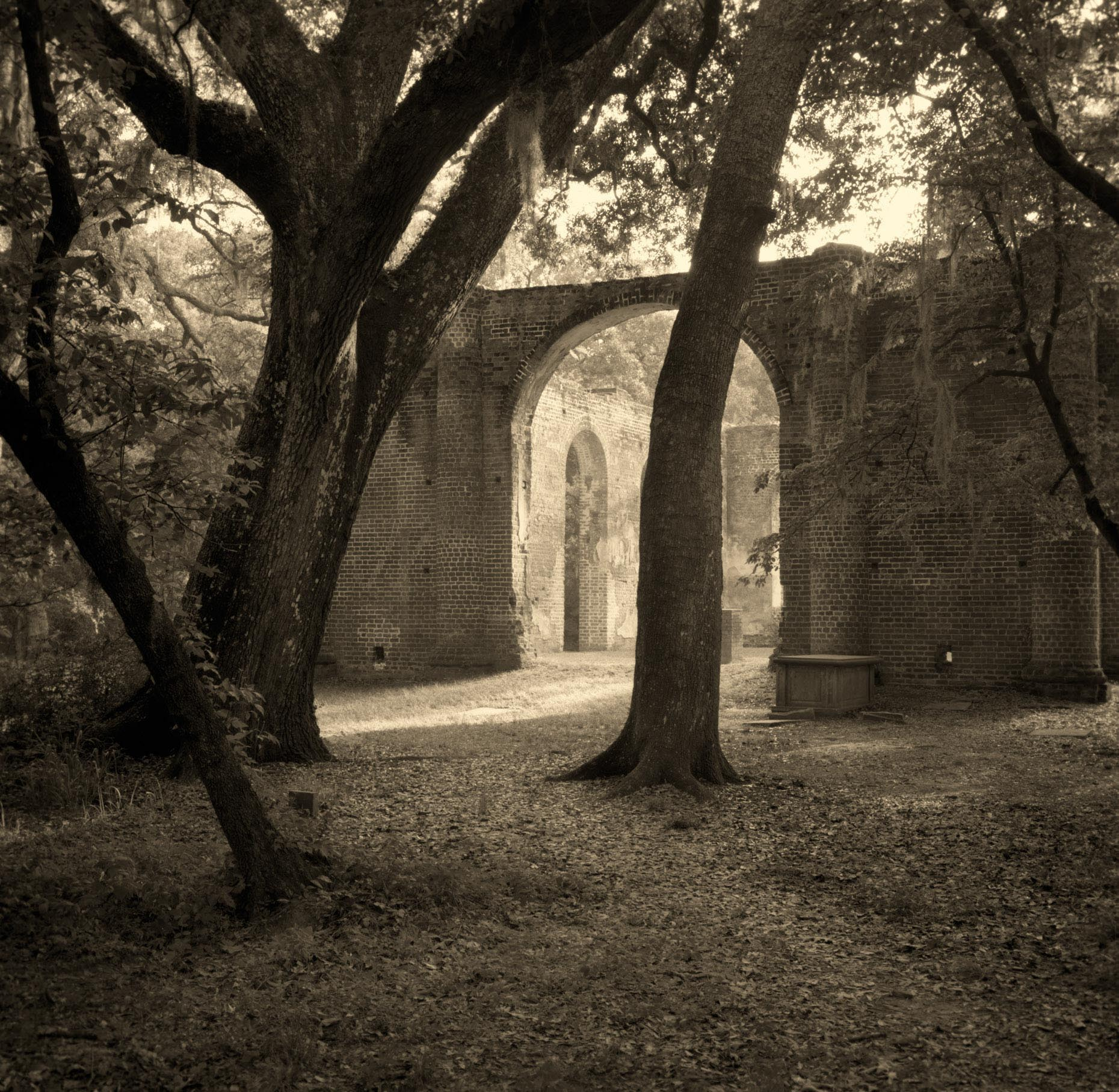 """Sheldon Church Ruins""  Sheldon South Carolina"