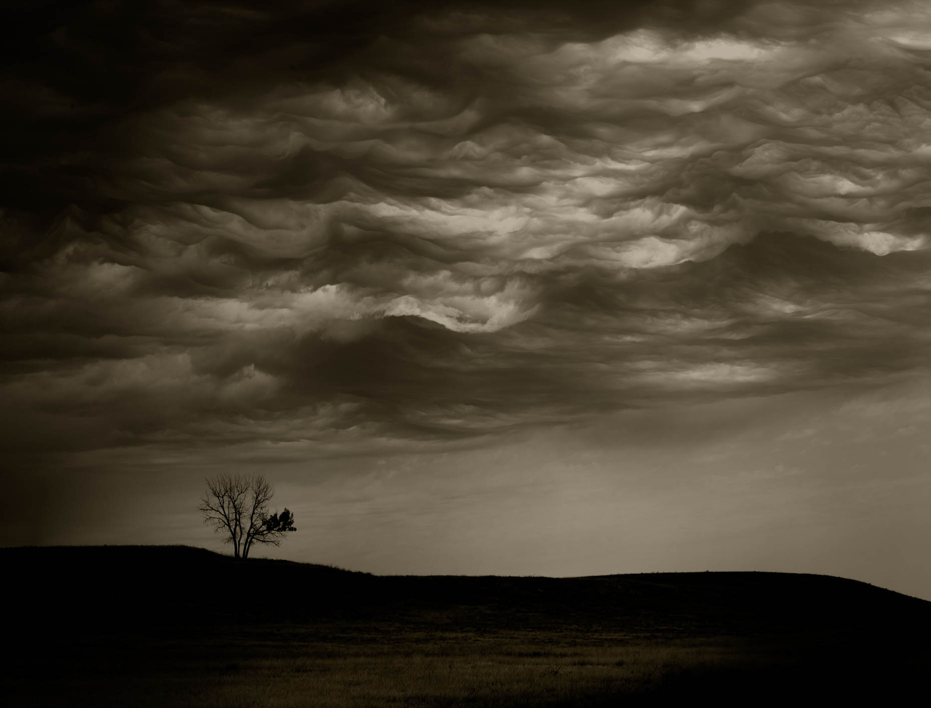 """Cloud Tree"", Badlands, South Dakota"