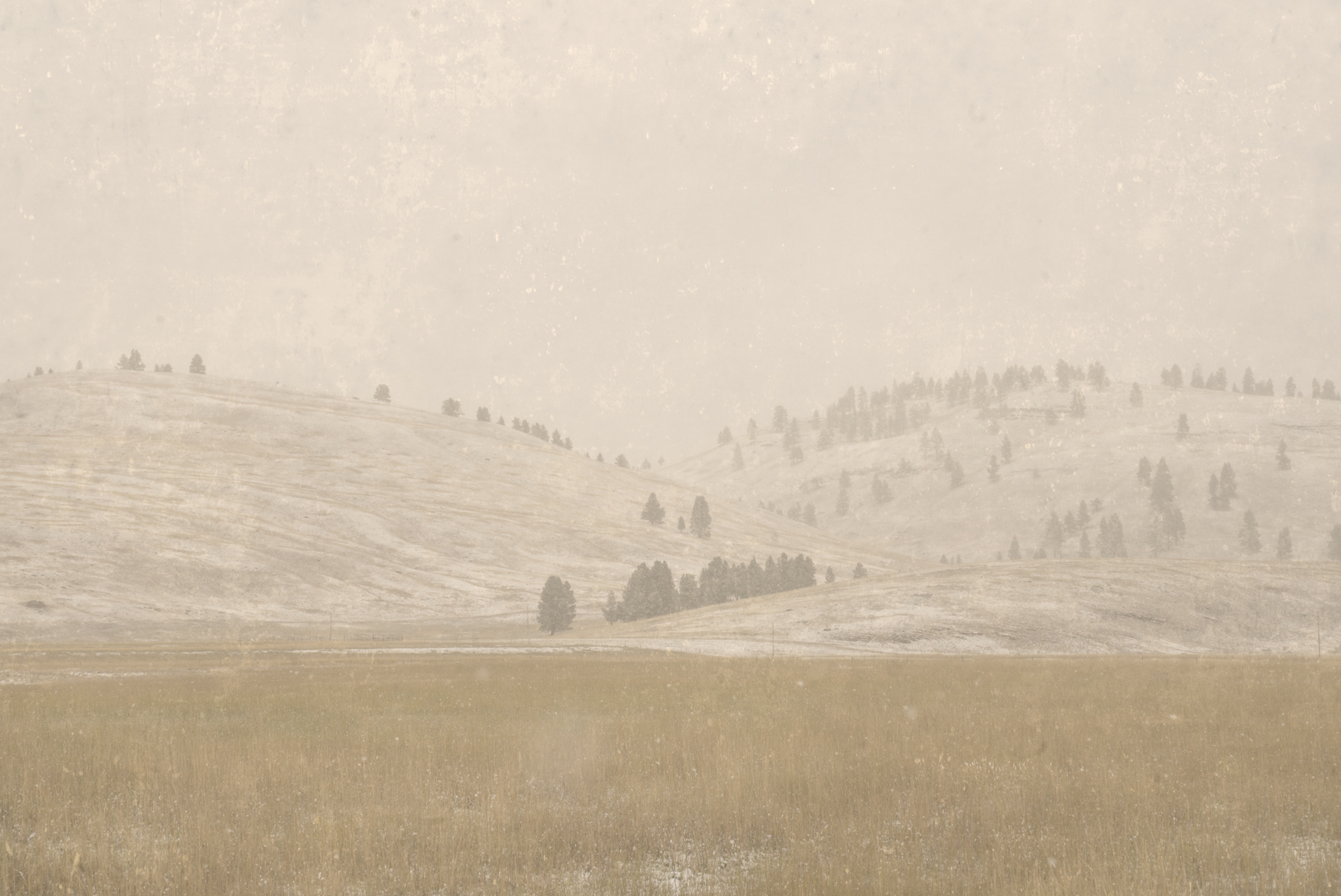 First Snow, Clearwater, Montana