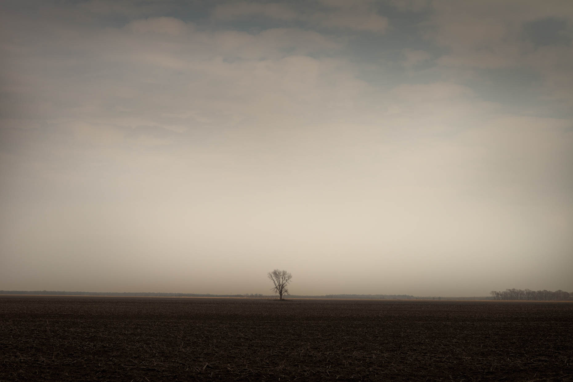 """One Tree"", Itta Beana, Mississippi"